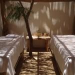 Spa salle de massage 2